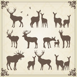 Vintage vector deer and moose illustration