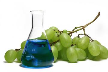 trauben mit laborkolben