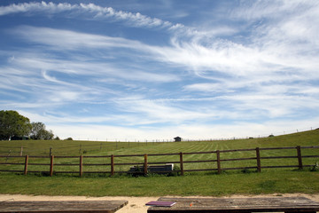 Paddock Under Beautiful Sky