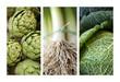 Artichaut, poireau, choux, légumes verts, bio, végétarien, vert