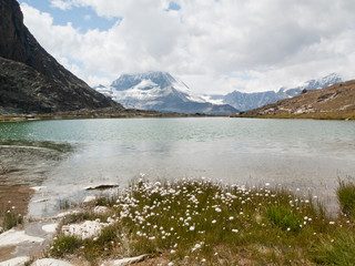 Lac du Riffelsee face au Cervin