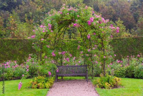 Fototapeta Single bench in the park under pink roses