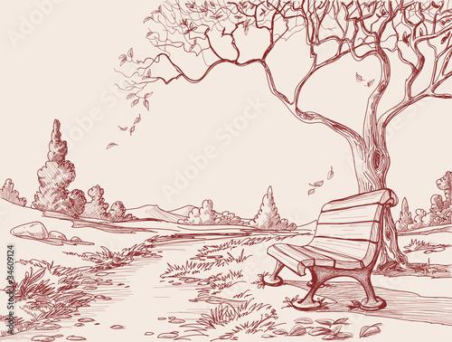 Autumn park - 34609124