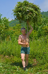 Man carrying grass 1