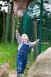 Kleiner Junge im Zoo