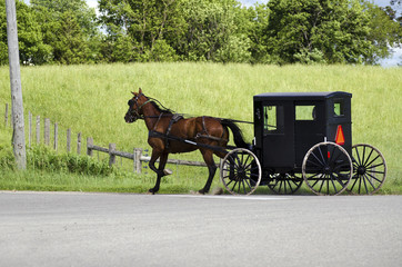 Amish (mennonite) people riding their buggy