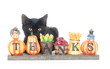 Black kitten and thank you sign
