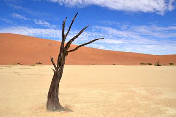 desert Namib,Namibia,Sossusvlei location
