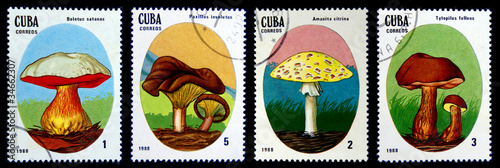 old postage stamp mushrooms
