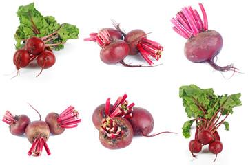 Set of beet roots