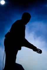 Musicista in concerto