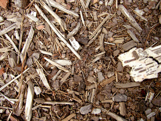 Wood chips, sawdust and woodscraps texture