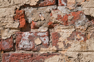 old brick wall a dirty background.jpg