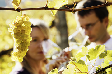 Winemaker couple tasting wine