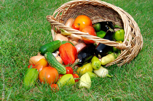 Basket with vegetables against a green grass