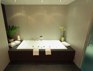 Wellnessbereich mit Badewanne