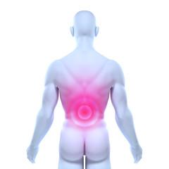 Männlicher Oberkörper – Rückenschmerzen