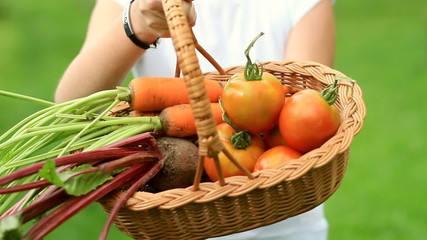 Female hands holding fresh vegetables in the basket, outdoors