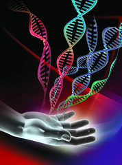 DNA molecules and hand