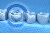 Fototapety Teeth focus