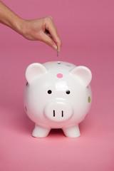 Piggy Bank Coin