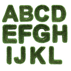 letter made of grass