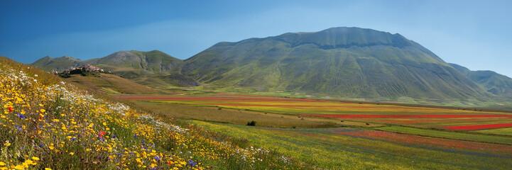 Panoramica Castelluccio con fioritura