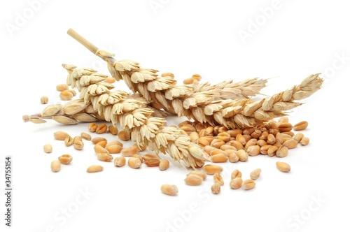 Leinwandbild Motiv Weizenähre