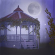 dreamy garden at night