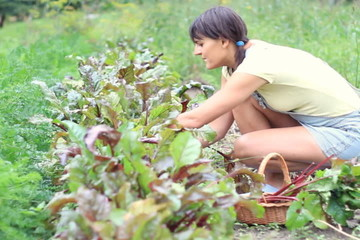 Young woman working in garden, dolly shot