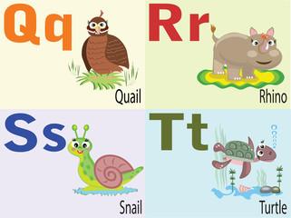 Animal alphabet Q,R,S,T