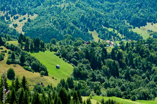 Idyllic view of a green valley in rural Romania