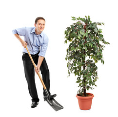 Person holding a shovel and decoration plant