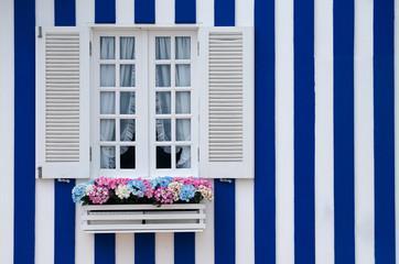 Beautiful typical window