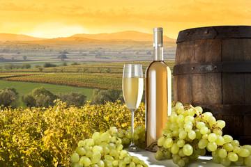white wine on vineyard