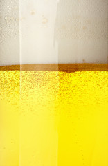 beer foam alcohol drink beverage