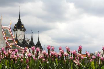Buddist Temple [ Loha Prasat ]