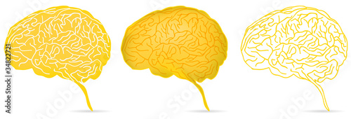 set of head profile with yellow brain isolated on white