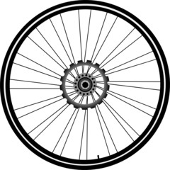 bike wheel with tire and spokes