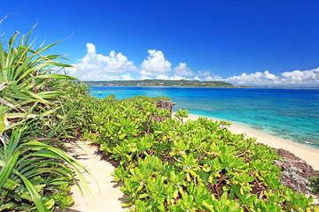 自然豊かなコマカ島