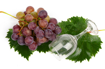 Grape and goblet