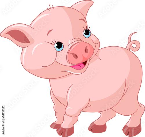 Foto op Canvas Boerderij Little Baby Pig