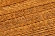 Nasses Teak Holz
