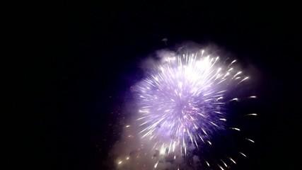 fiore d'artificio