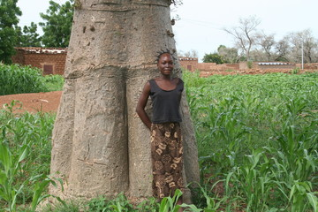 jeune fille au baobab