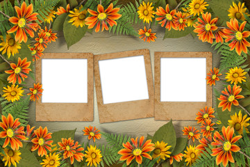 Herbarium of flowers and leaves on the floral background with fr
