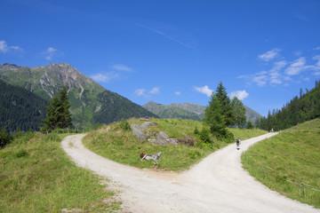 Wandertour zum Riesachsee - Schladming