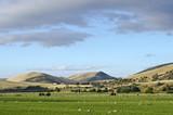 zemědělská půda, údolí řeky uhlí, tasmánie, austrálie