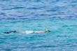 Ragazzo che fa snorkeling in mare