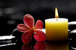 spa scene - burning,candle and red orchid on zen stones